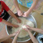 麹の塩きり。小さい手がかわいい。